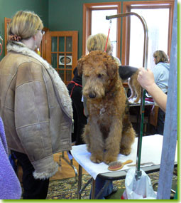 ATCC Grooming Seminar 2007 - A patient boy waits for his turn