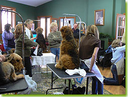 ATCC Grooming Seminar 2007 - The group watches as a perfect furnishing emerges